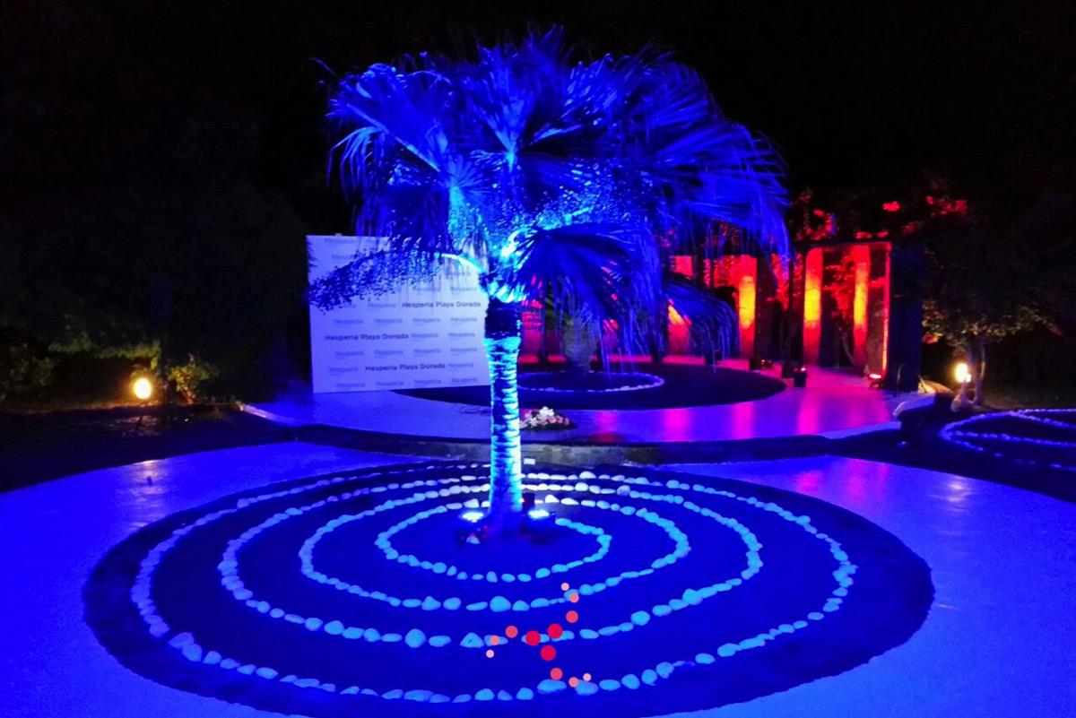Iluminaci n para bodas musicalia bodas for Iluminacion para palmeras